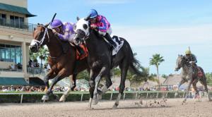 Richest Horse Race