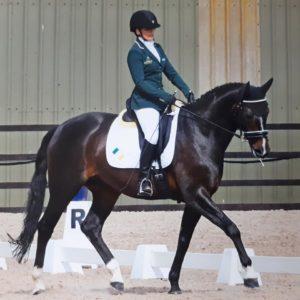 Para Equestrian